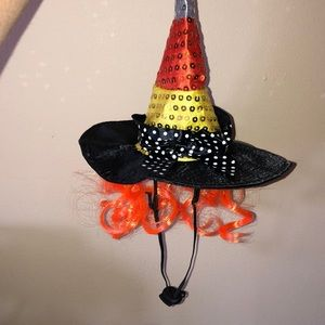 Pet Halloween witch's hair with orange hair M/L